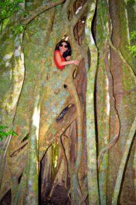 Spot of tree climbing anyone? 2