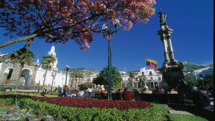 town square in quito with cherry blossoms