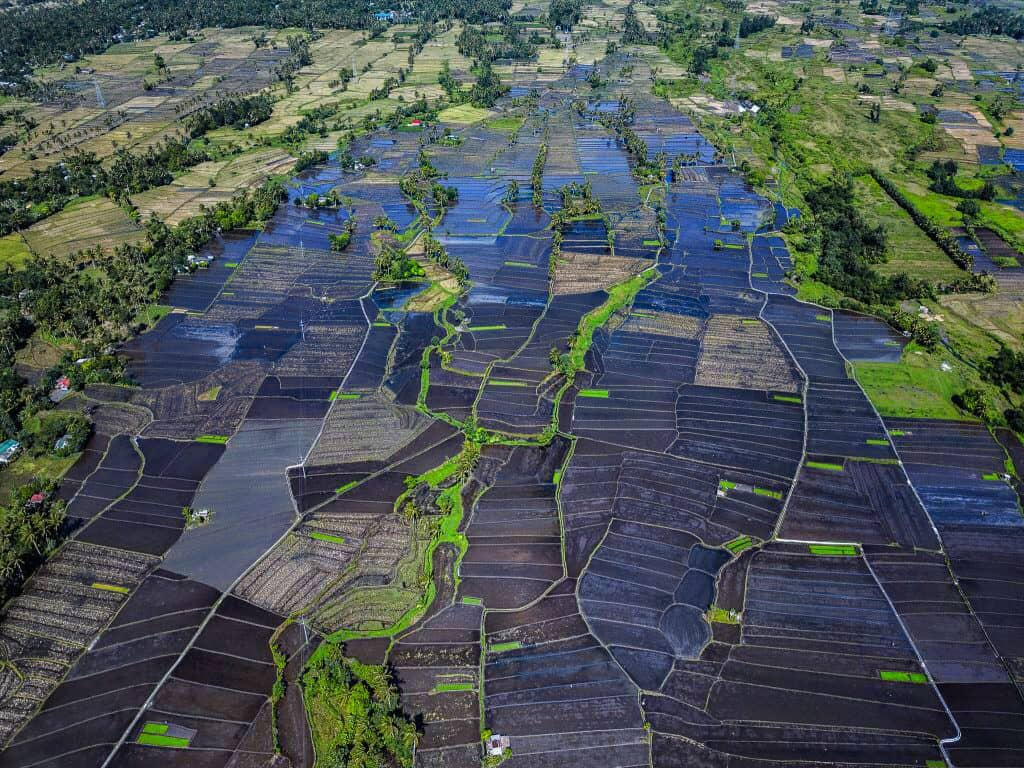 aerial view of the flooded rice fields that surround mayon volcano in legazpi philippines in albay
