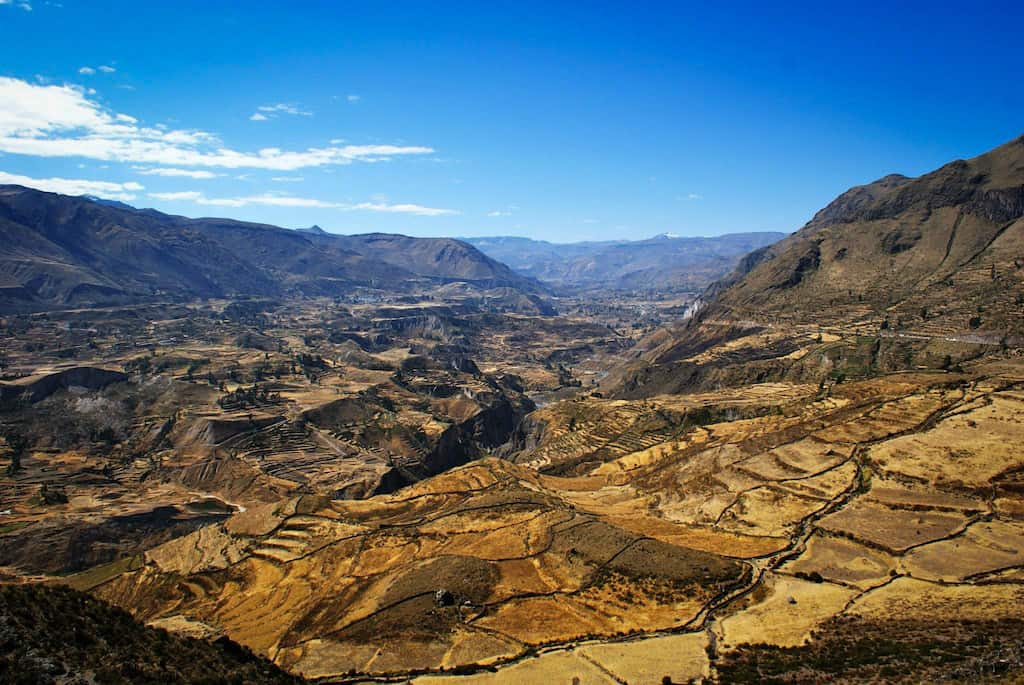 panoramic view of rice terraces in Peru in colca canyon