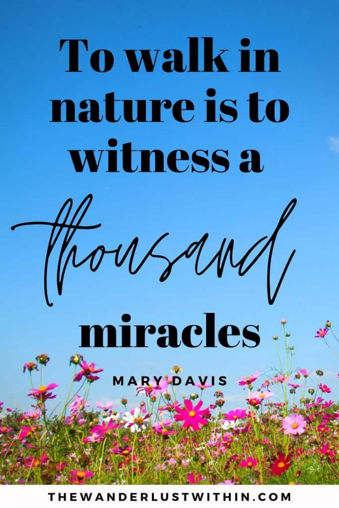 "quotes hiking - ""To walk in nature is to witness a thousand miracles."" – Mary Davis"