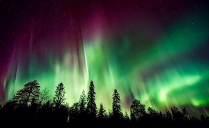 red and green northern lights in the sky with silhouette of a forest below in Alta Norway