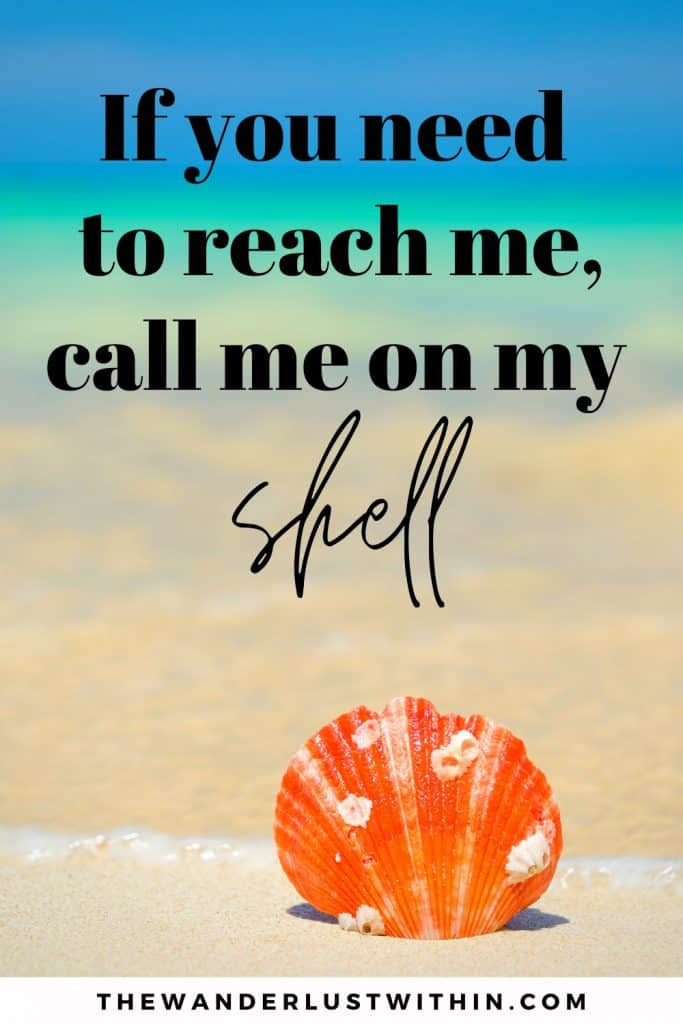 beach quotes funny with orange shell saying If you need to reach me, call me on my shell.