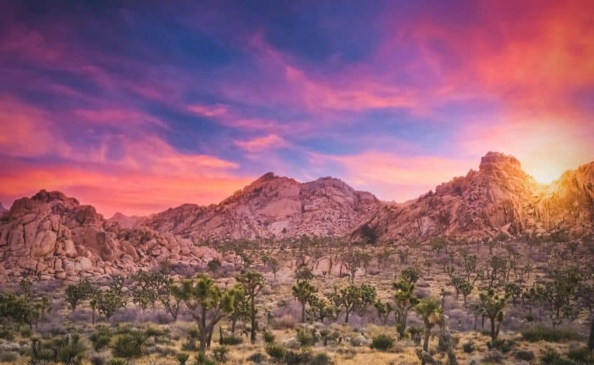 amazing airbnbs in joshua tree
