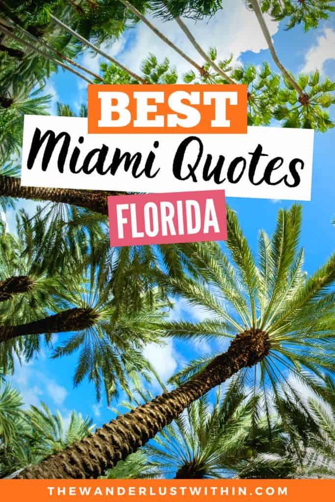 best miami quotes florida