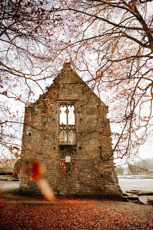 ruins of a church surrounded by autumnal trees and red leaves all over the floor in village of minster lovell in the cotswolds