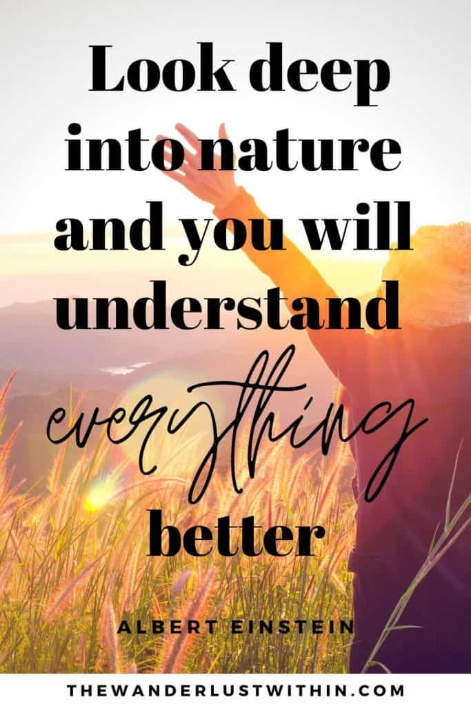 "inspirational quote nature - ""Look deep into nature and you will understand everything better."" – Albert Einstein"