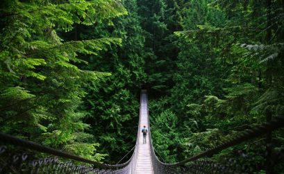 man walking on bridge into green forest - quotes about exploration