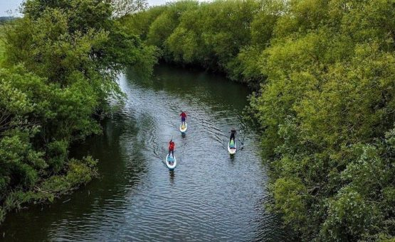 3 people on stand up paddle boards paddling along the river ouse with green trees surrounded the river
