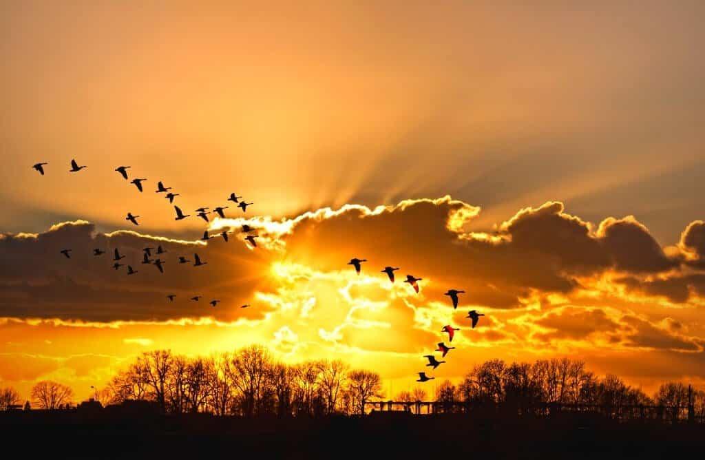 beautiful sunset quotes sky captions short