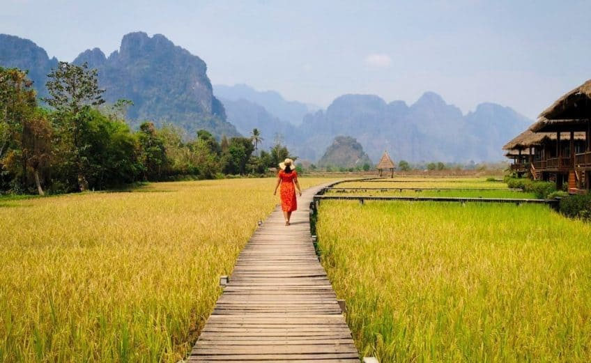 girl in red dress walks on a wooden platform across yellow and green rice fields with mountains in the background in Vang Vieng
